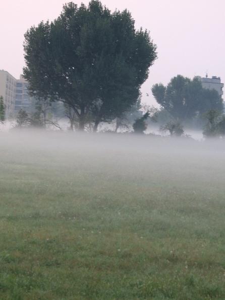 pratone_nebbia