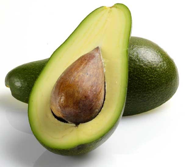 02388_avocado