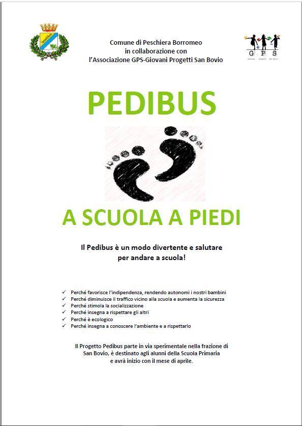 03684 pedibus02