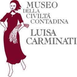 museo luisa carminati