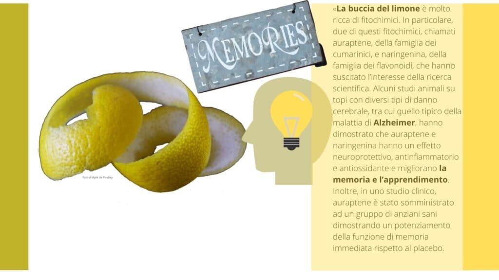 Alzheimer -Buccia di Limone - Memoria